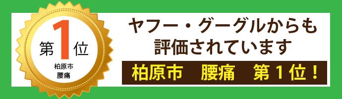 medal_banner1